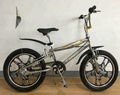 HH-BX2013 boys bmx street bike with free style and good quality