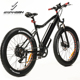 Hot sale fat tyre E-bike 48v 1000w ebike fat tire electric bicycle With Perfect Service