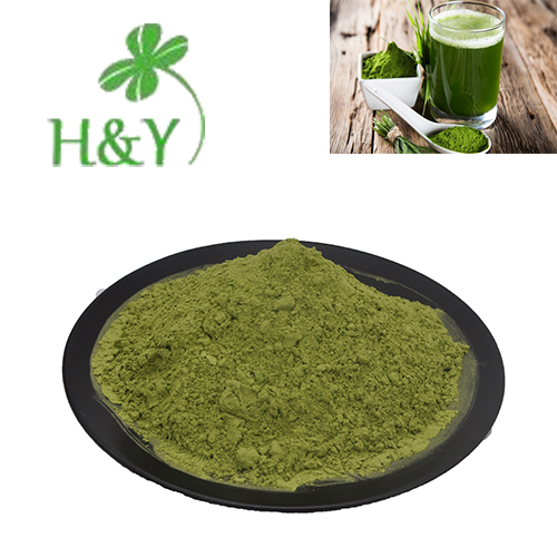 factory supply 100% <strong>natural</strong> green barley grass powder
