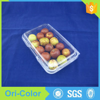 Plastic clear fruit salad clamshell packaging boxes with lid