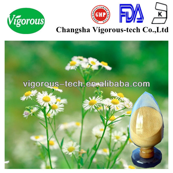chamomile plant extract/chamomile powder extract