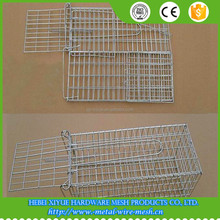 Humane mouse trap catch / galvanized folding trap cages