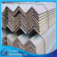 Steel Profile L Angle---full sizes 20x3