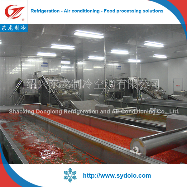 frozen okra/mushroom/beans production line plant type fruit & vegetable processing machines