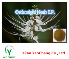 High Quality Java Tea Extract Powder