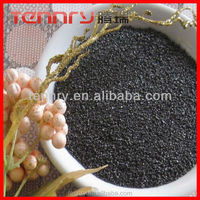 Low Sulphur Calcined Petroleum Coke/Low S Carbon Additive Carburizer