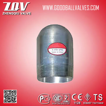 Water system plumbing materials fitting Male Plug made in China