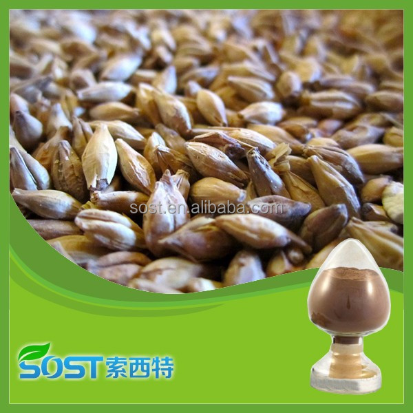 Best selling barley malt extract powder with high quality