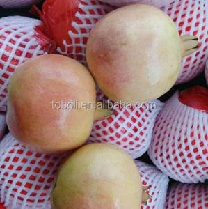 market price for fresh pomegranate fruits for sale