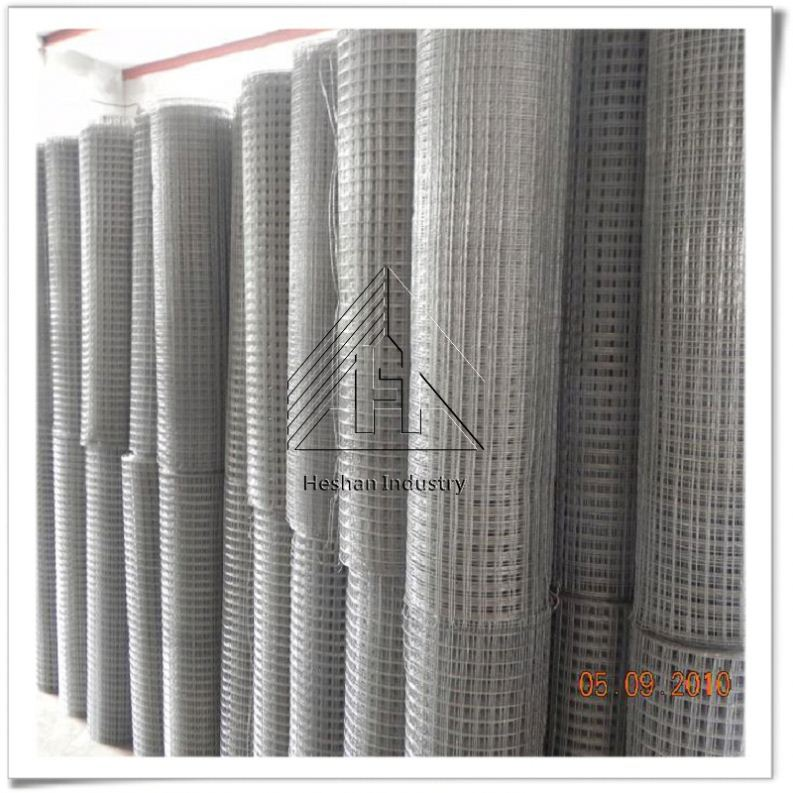 ss304 ss316 electric hot dipped galvanized pvc coated material welded wire mesh