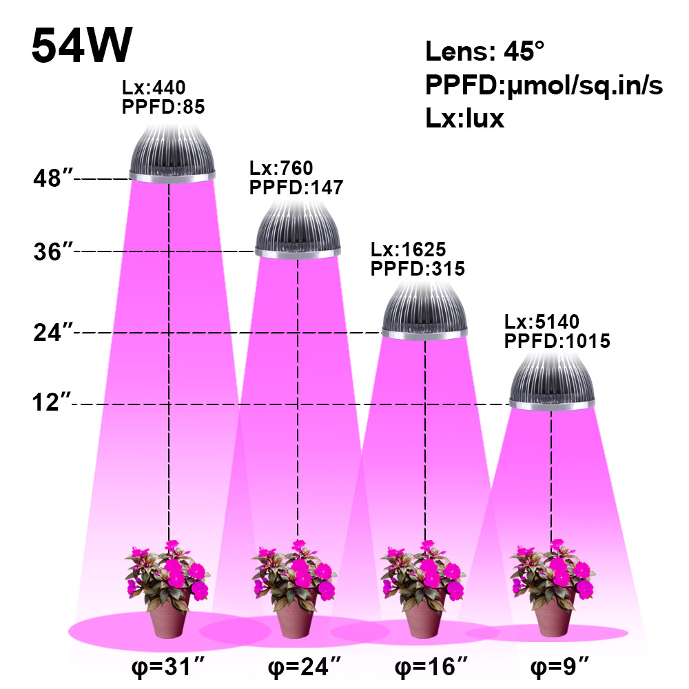 54W 36W LED Grow Light Indoor growing lights Hydroponics growing system For Garden Greenhouse plants Herbs Vegetable Flowers (8)