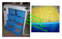 automatic bean sprouter/bean sprouting machine