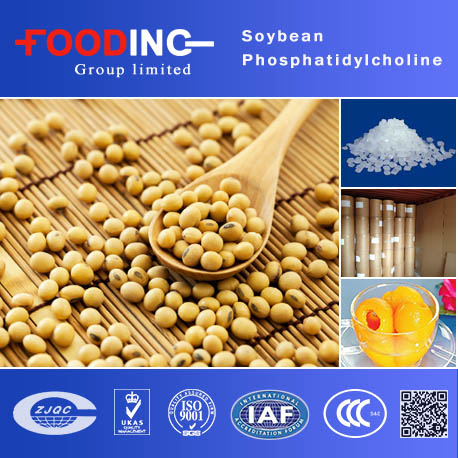 Pure Soybean Extract 80% Phosphatidylcholine(CAS 8002-43-5)