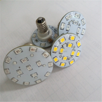 12v 24v Warm White Cold White Amusement Led E14 60v