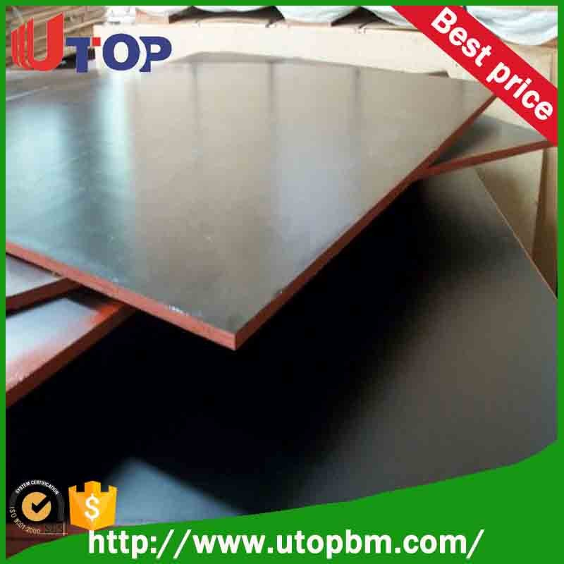 timbers and woods/ plywood manufacture film faced plywood with best price