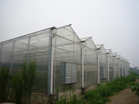 roof type tunnel greenhouse polycarbonate greenhouse octagonal greenhouse