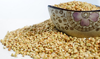 Roasted Buckwheat superior in quality