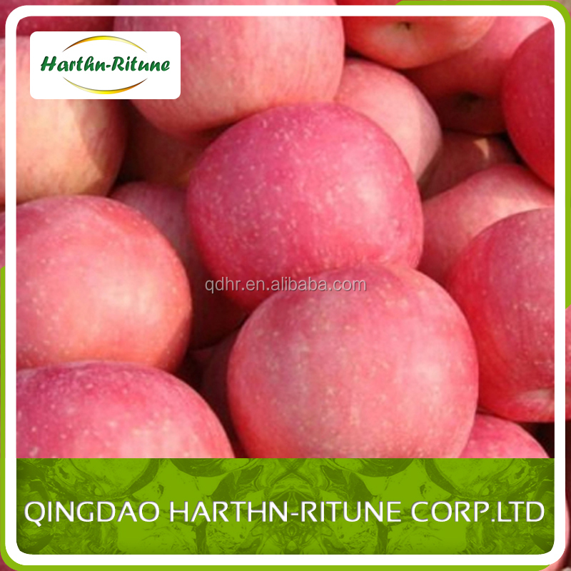 red /green fresh apple fruit for sale