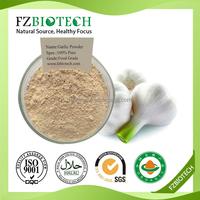 China Suppliers Free Sample Low Pirce Dehydrated Dried Garlic Powder