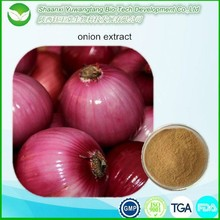 2015 Best selling Allium cepa extract / Onion Extract Quercetin