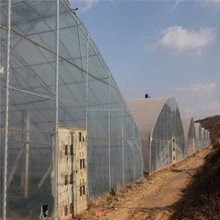 Long Life And Anti Dropping 150-200 Micron PE Greenhouse Film