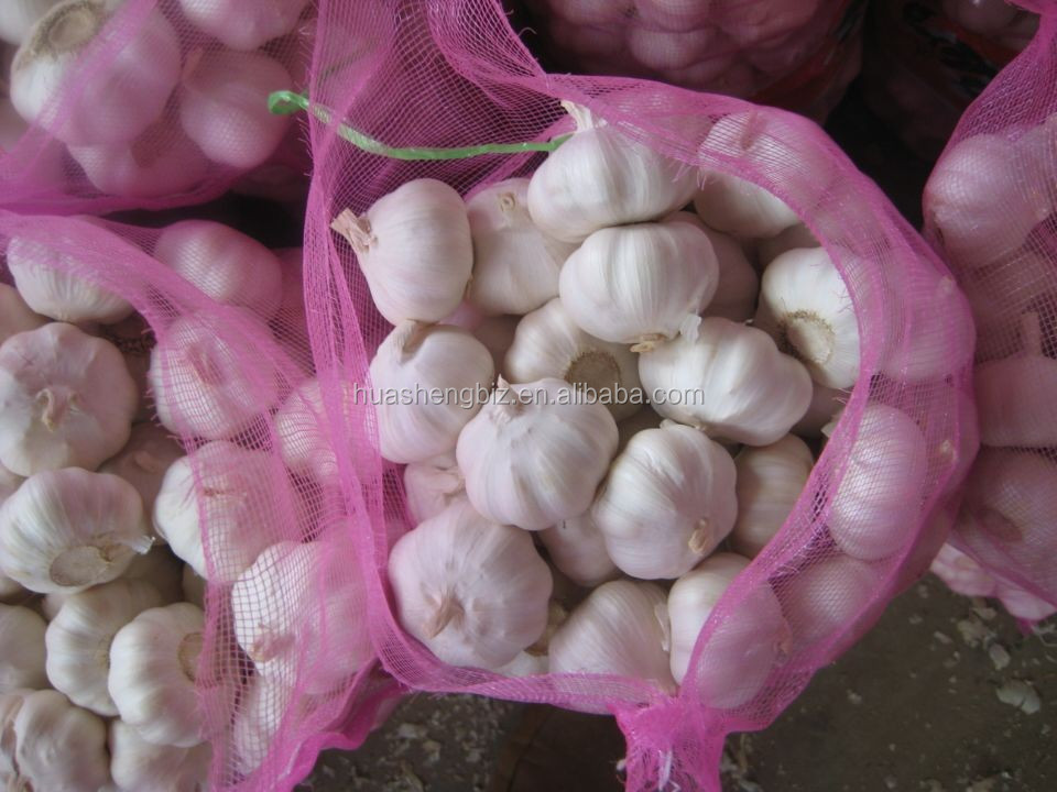 Fresh Garlic with high quality
