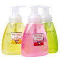 Wholesale hand sanitizer in liquid hand soap and foam hand sanitizer
