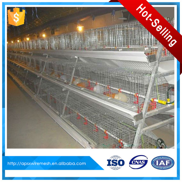 egg chicken rearing poultry battery cages for sale