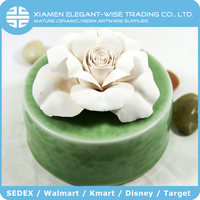 Room fragrance ceramic bottle ceramic sola flower diffuser
