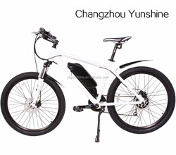 Yunshine new model G-She, cheap pocket size sport electric bike