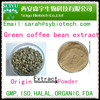 50% Green coffee bean extract, Weight loss raw material