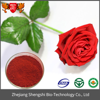 Rosa Canina Extract /Rose Flower Extract