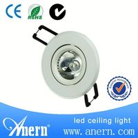 High quality small size 1W led down light with 2 years warranty
