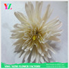 Silk vision flowers wholesale Gerber daisy plastic silk flower