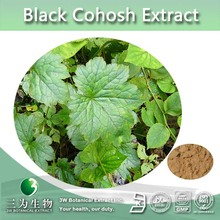 Top Quality Black Cohosh Extract 5% Triterpene Glycosides,CAS NO.: 84776-26-1