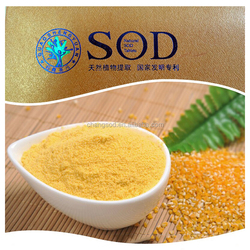 Active catalase enzyme corn extraction powder superoxide dismutase SOD for reducing cells vitality