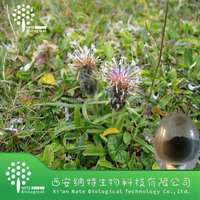 GMP Manufacturer 100% buy Black Cohosh Extract Powder Cimicifuga foetida extract Triterpenoid Saponins 2.5%8%
