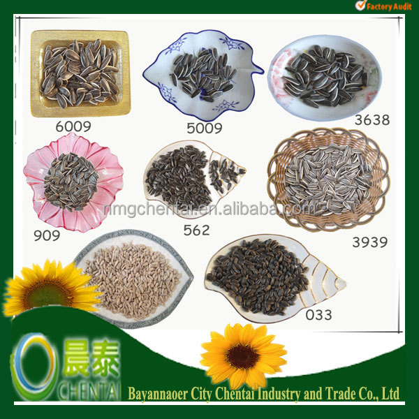 Supply Hulled Hybrid Salted Sunflower Seeds