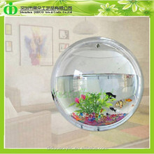 DDT-0076 Trade Assurance Cheap Aquarium Fish Shop