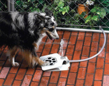 Dog Water Fountain, Prevents Your Pet From Drinking Stagnant Water