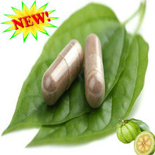 2016 new products burning fat top quality garcinia cambogia pills