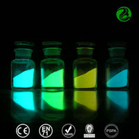 fluorescent powder / glow in the dark/ fluorescent phosphor powder