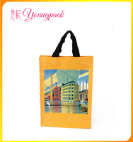 2016 Wholesale Recyclable Fashionable PP Woven Shopping Bag