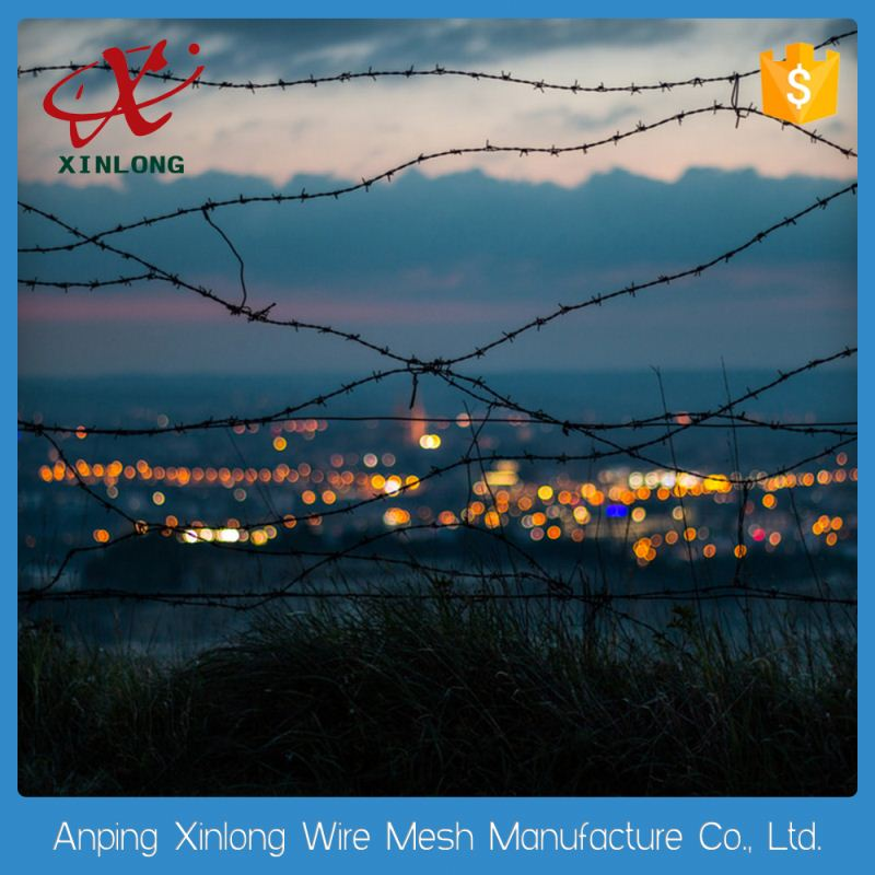 Plastic/pvc coated hot dip galvanized barbed wire mesh fence