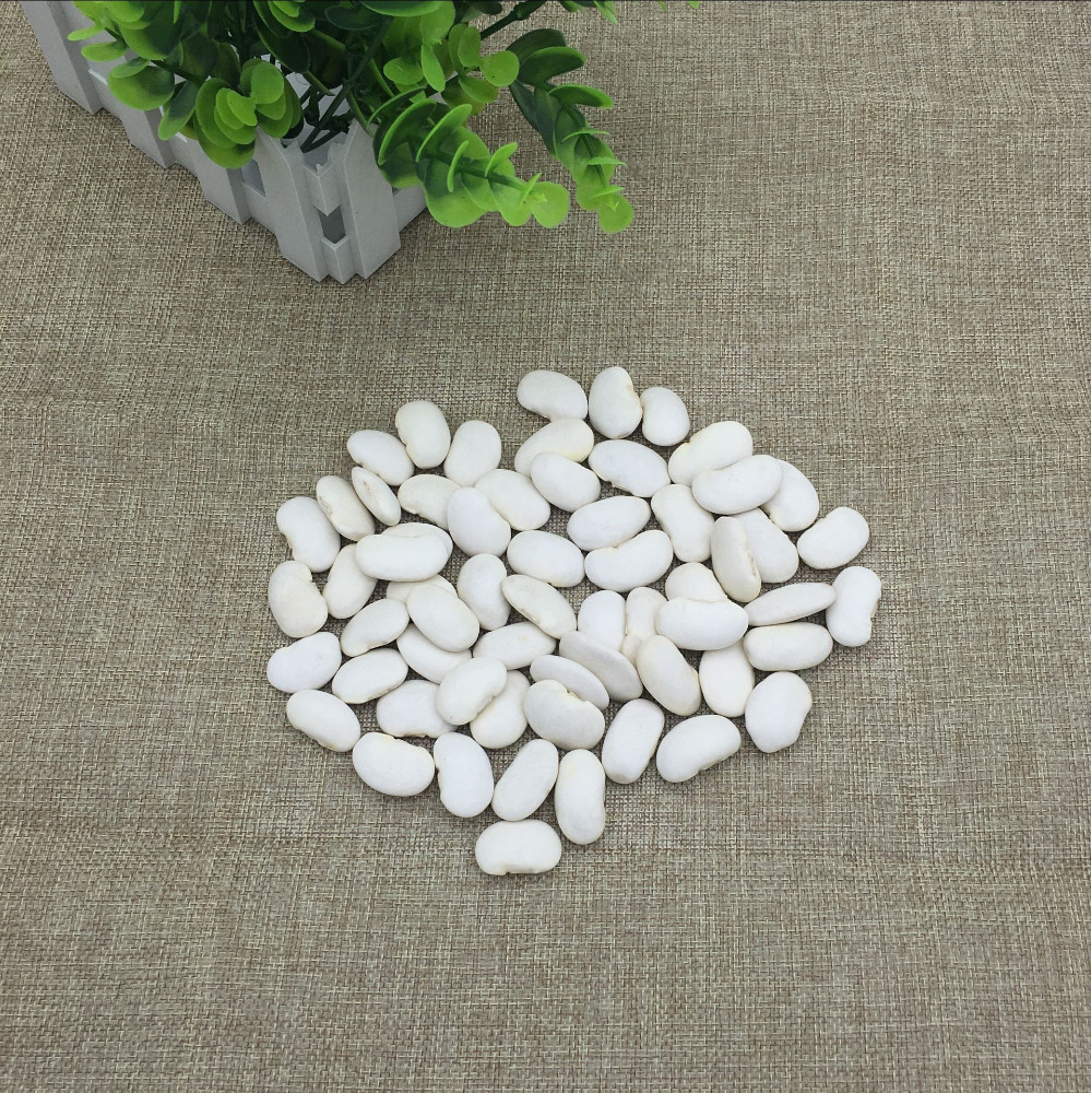 Pure natural Large white kidney bean p.e.