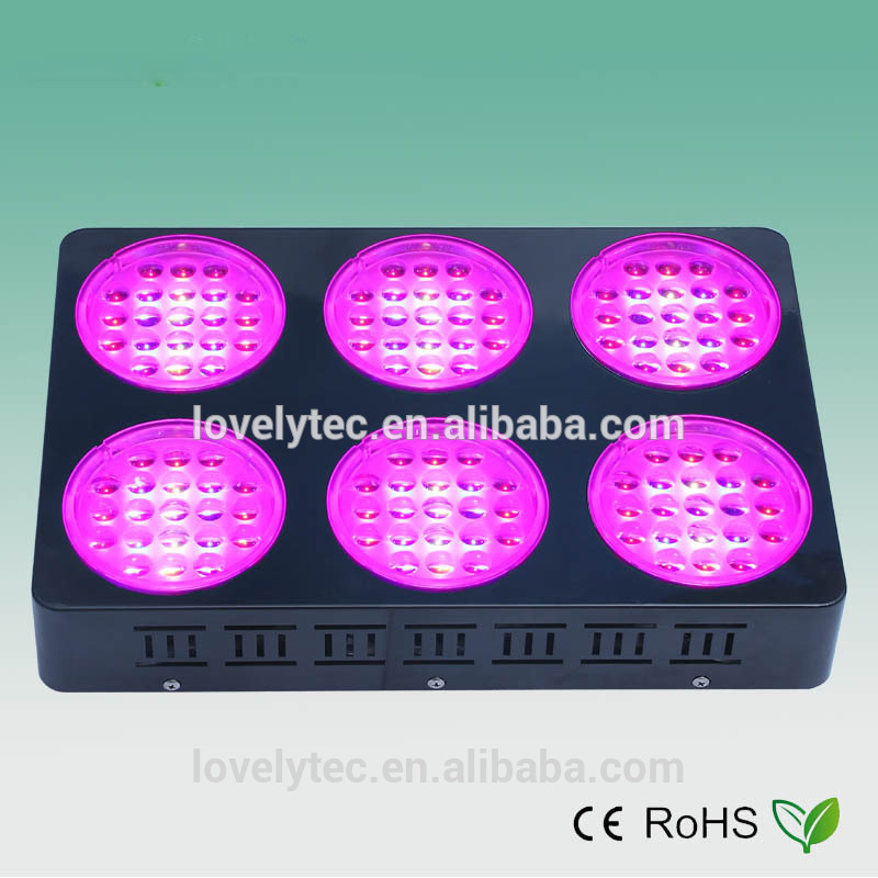 Multifunctional 300w cob led grow lights for lettuce made in China