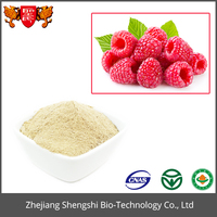 Best Sales 100% Natural Raspberry Extract White Powder