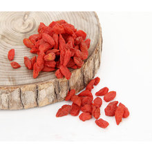 Chinese Herb goji berry from Inner Mongolia wolfberry with low price