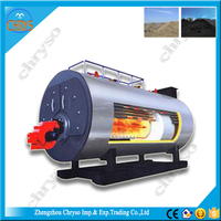 CWNS Series CE ISO gas fired boiler hydrogen boiler for heating