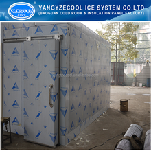 clean cold room / lab room / pharmarcy storage room,pu panel cold room